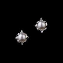 Boutons de rose - Boucles d'oreilles